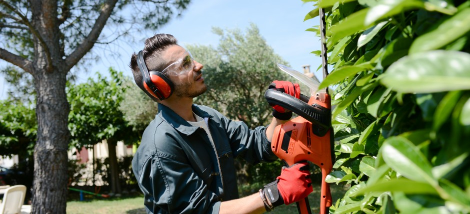 handsome young man gardener trimming hedgerow in park outdoor